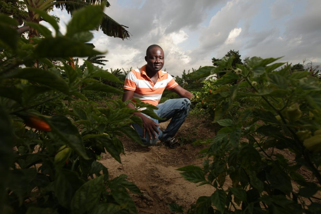 """<span class=""""photo-caption"""">DicksonDosthenesis transforming a typical harvest of chili peppers, common in Haitian cuisine, into a money-making opportunity. """"Farmers don't usually keep track of what's going on the in the marketplace."""" In school, though, he learned to plan around what would be most profitable. Realizing farmers traditionally harvested peppers in October, he planted early and harvested in August, when it's rare to have peppers. At market, he was surrounded by eager buyers.</span><span class=""""photo-credit"""">Silas Crews</span>"""