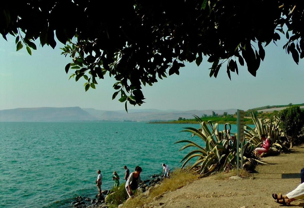 """<span class=""""photo-caption"""">A view of the Sea of Galilee, from Capernaum.</span><span class=""""photo-credit"""">Photo/Betty Enns</span>"""