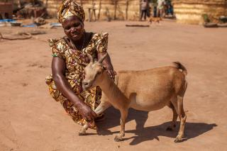 Denenadji Josephine says she and other women in her village are seeing the benefits of offering their goats additional nutrients.