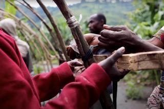 Hut Build   DR Congo   Video