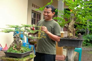 Yunarso Rusandono trims a bonsia tree in his front garden