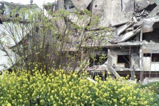Old Homs