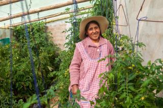 Bolivia greenhouse