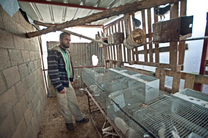 For Hashem Manar Al Attar, raising rabbits and pigeons provides food and income in a time of uncertainty.