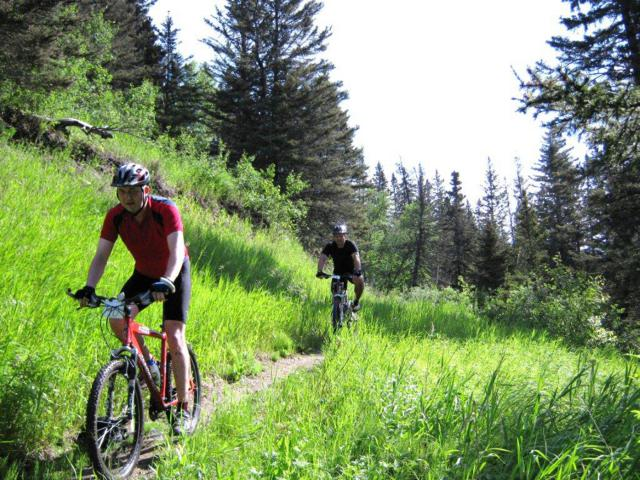 Join us for Cycle Clear Lake 2015 -- push through the water, mud, and tall grass on this beautiful ride as we raise funds to help vulnerable Lebanese and Syrian families in Lebanon!