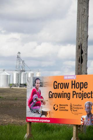 Welcome to the Grow Hope field, just outside of Niverville, MB.