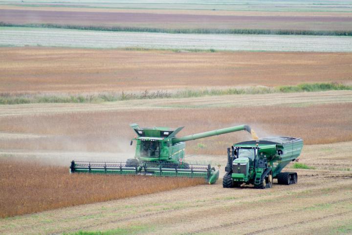 Harvest, September 22/16.