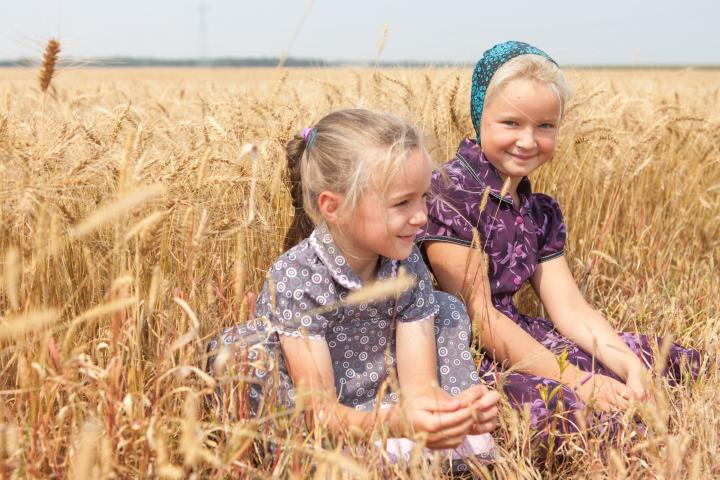 Summer Kleinsasser (5) and Chloe Waldner (8) in Crystal Spring Hutterite Colony's wheat field at harvest in August 2018.
