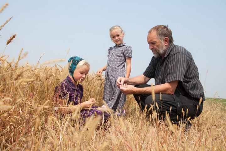 Jerry Waldner, Crystal Spring's farm manager, with his granddaughters Summer Kleinsasser (centre) and Chloe Waldner (left) on harvest day in 2018.