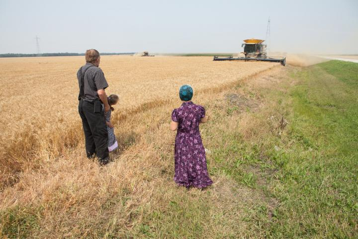Jerry Waldner, Crystal Spring's farm manager, oversees the wheat harvest with his granddaughters Summer Kleinsasserand Chloe Waldner (right).