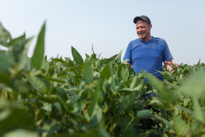 Grant Dyck at Artel Farms' Grow Hope soybean field in August 2018.