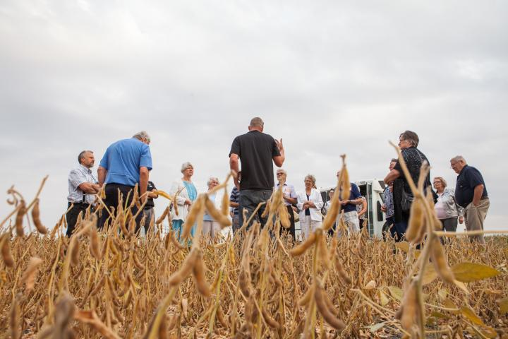 Grant Dyck (centre) shares about soybeans with 2018 harvest celebration guests on site at a Crystal Spring field.